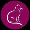 Katze_web